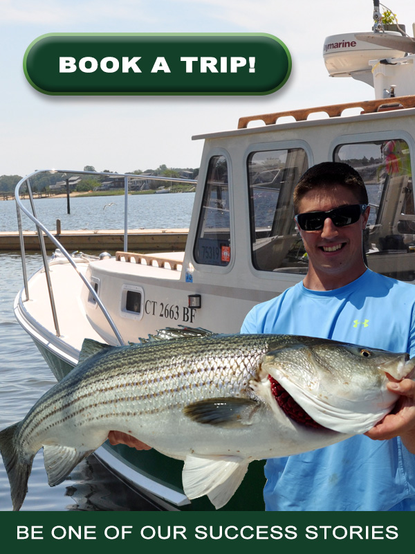 Booking Fishing Trip Banner